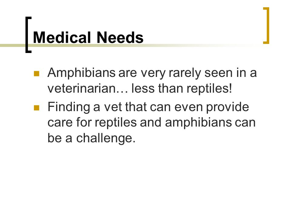 Medical Needs Amphibians are very rarely seen in a veterinarian… less than reptiles! Finding a vet that can even provide care for reptiles and amphibi