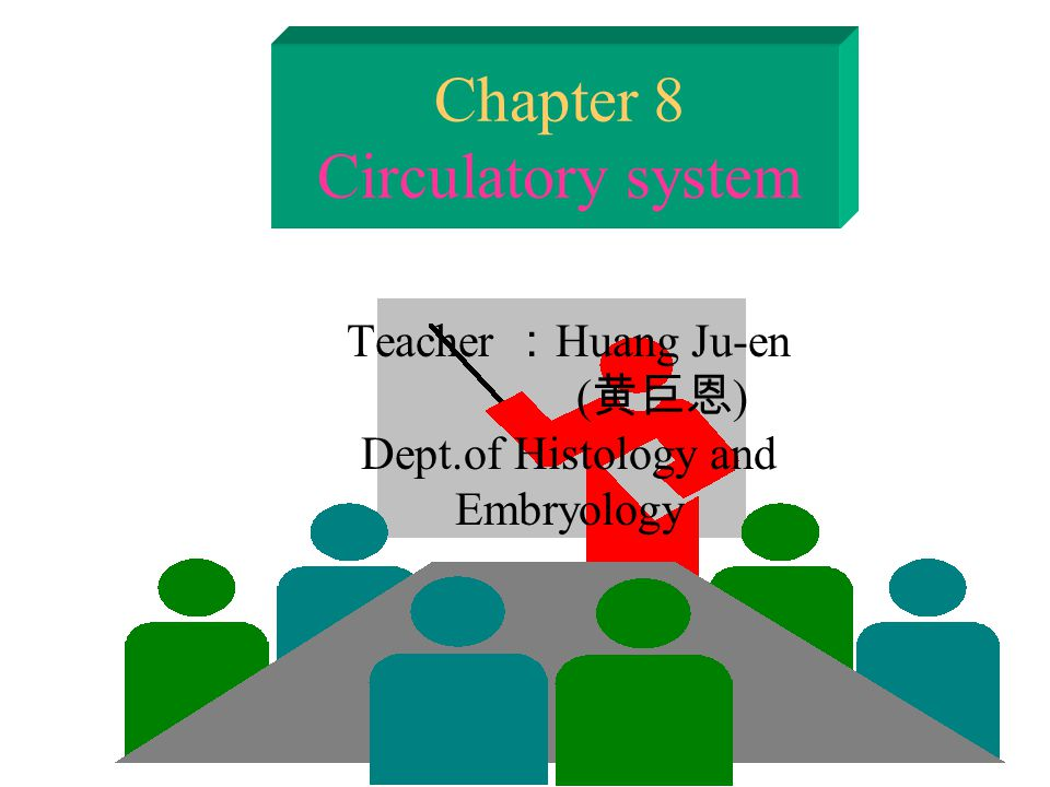 Chapter 8 Circulatory system Teacher : Huang Ju-en ( 黄巨恩 ) Dept.of Histology and Embryology
