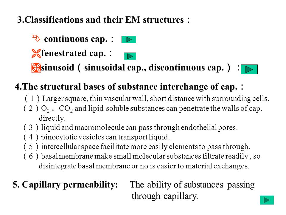 3.Classifications and their EM structures :  continuous cap.
