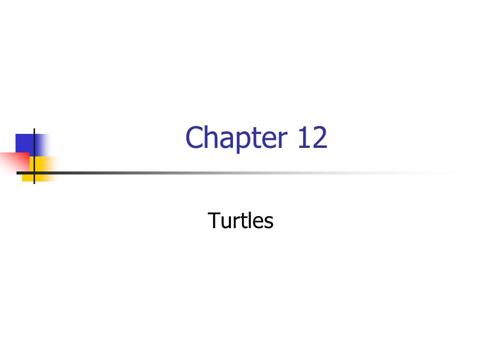Chapter 12 Turtles