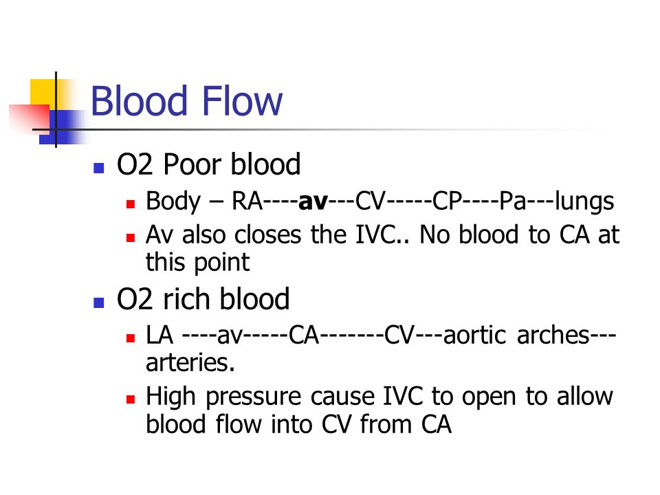 Blood Flow O2 Poor blood Body – RA----av---CV-----CP----Pa---lungs Av also closes the IVC..