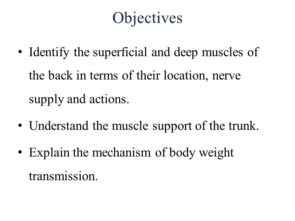 Objectives Identify the superficial and deep muscles of the back in terms of their location, nerve supply and actions.