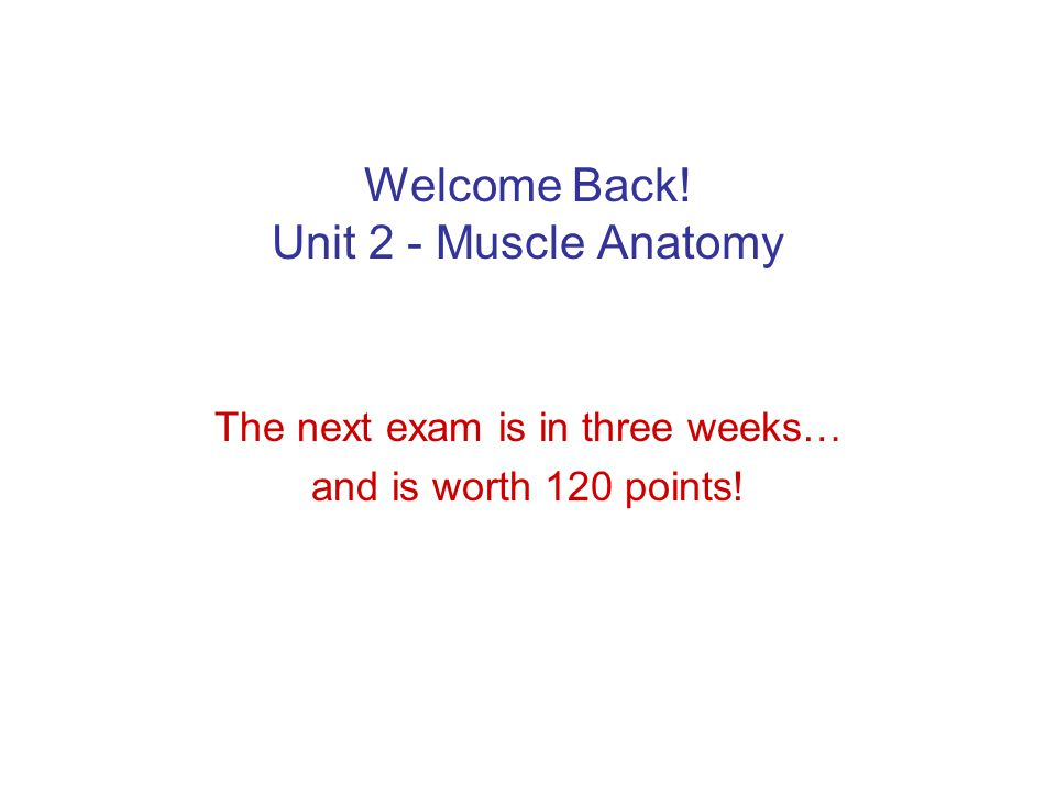 Welcome Back! Unit 2 - Muscle Anatomy The next exam is in three weeks… and is worth 120 points!