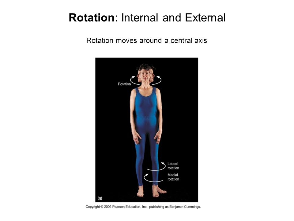 Rotation: Internal and External Rotation moves around a central axis