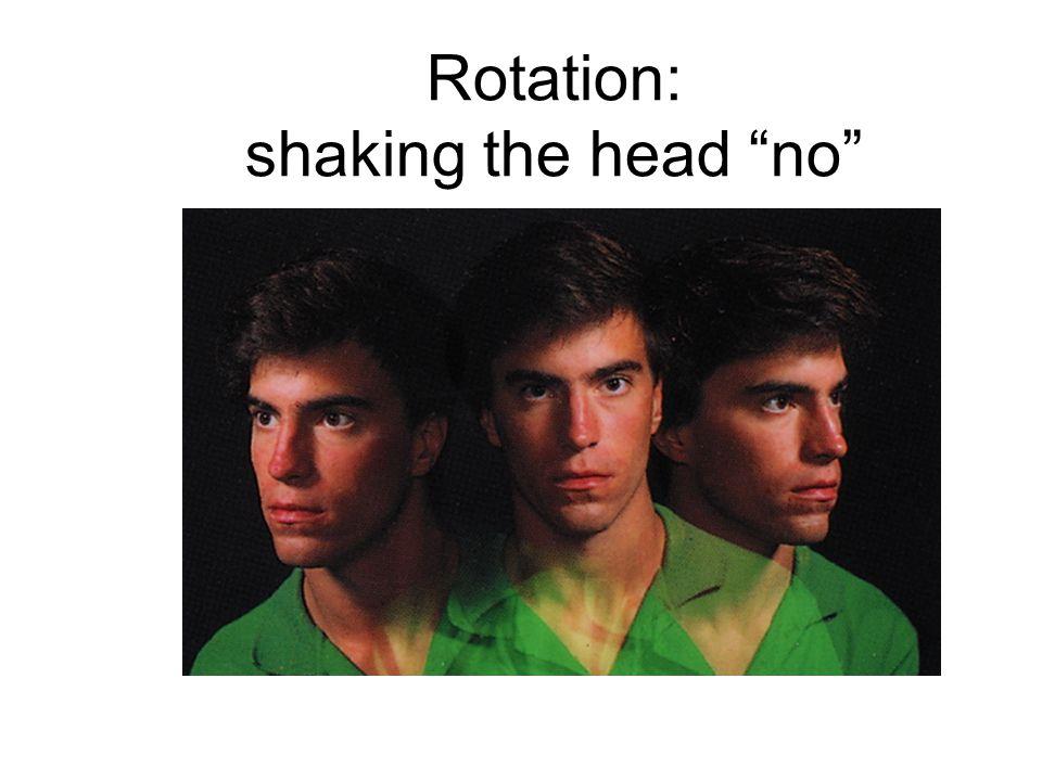 Rotation: shaking the head no