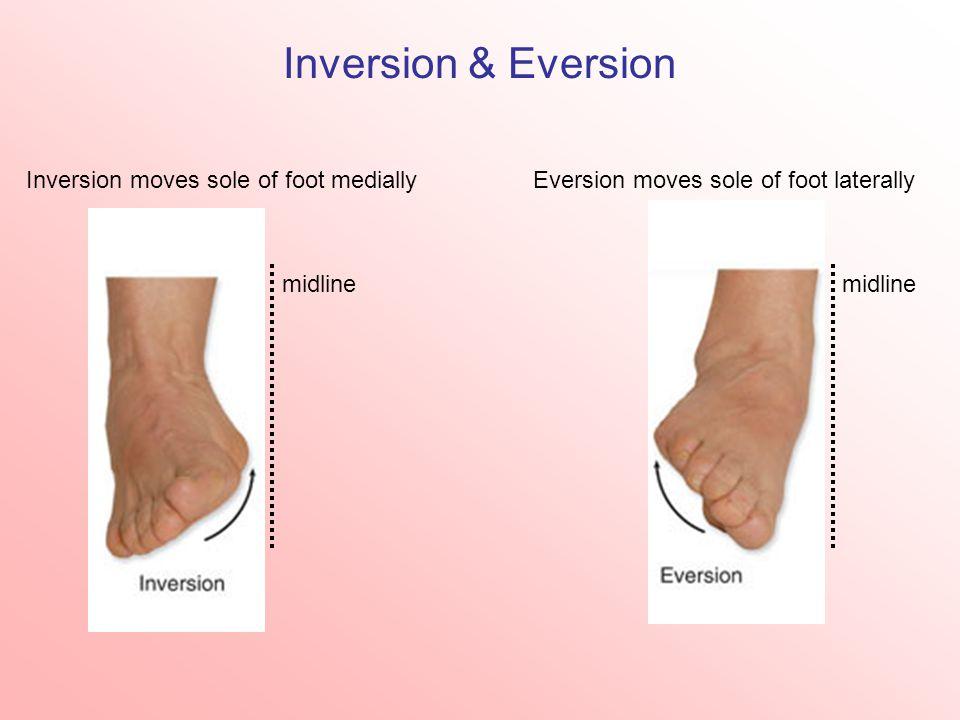 Inversion & Eversion Inversion moves sole of foot mediallyEversion moves sole of foot laterally midline
