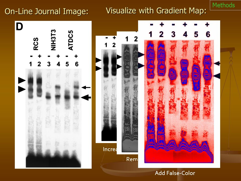On-Line Journal Image: Increase contrast Remap Intensities Visualize with Gradient Map: Add False-Color Methods