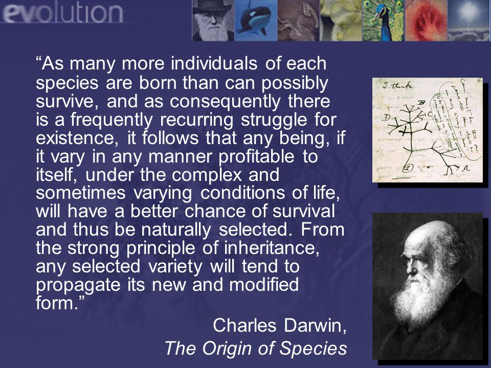 Darwin's Theory If there is a struggle for existence… If heritable variations exist among members of a population… If these variations affect survival and/or reproduction… Then species will change over time.