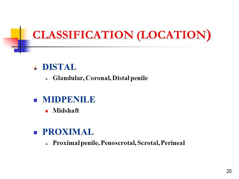 20 CLASSIFICATION (LOCATION ) DISTAL Glandular, Coronal, Distal penile MIDPENILE Midshaft PROXIMAL Proximal penile, Penoscrotal, Scrotal, Perineal