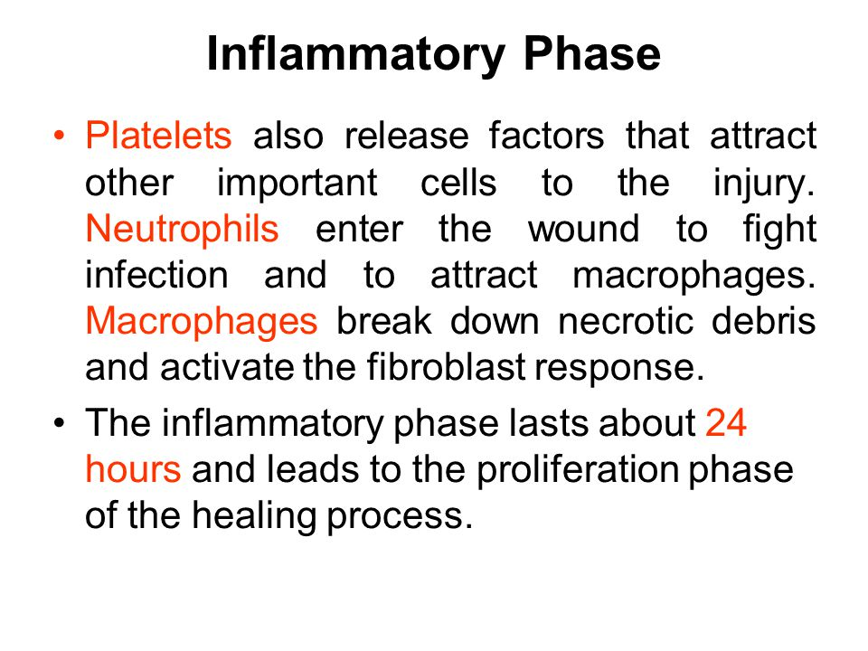 Inflammatory Phase Platelets also release factors that attract other important cells to the injury.