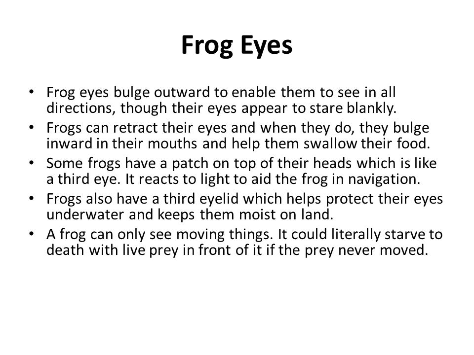 Frog Eyes Frog eyes bulge outward to enable them to see in all directions, though their eyes appear to stare blankly. Frogs can retract their eyes and