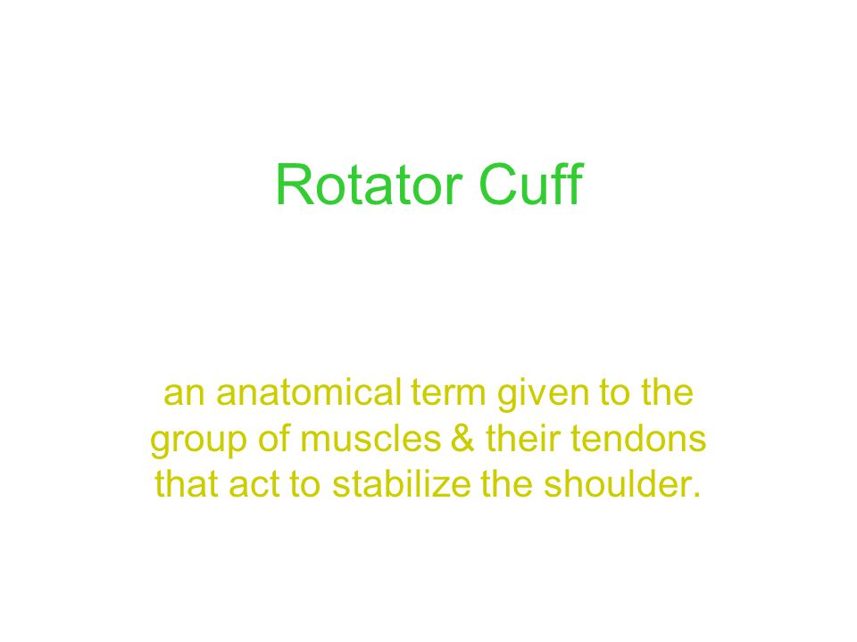 Rotator Cuff an anatomical term given to the group of muscles & their tendons that act to stabilize the shoulder.