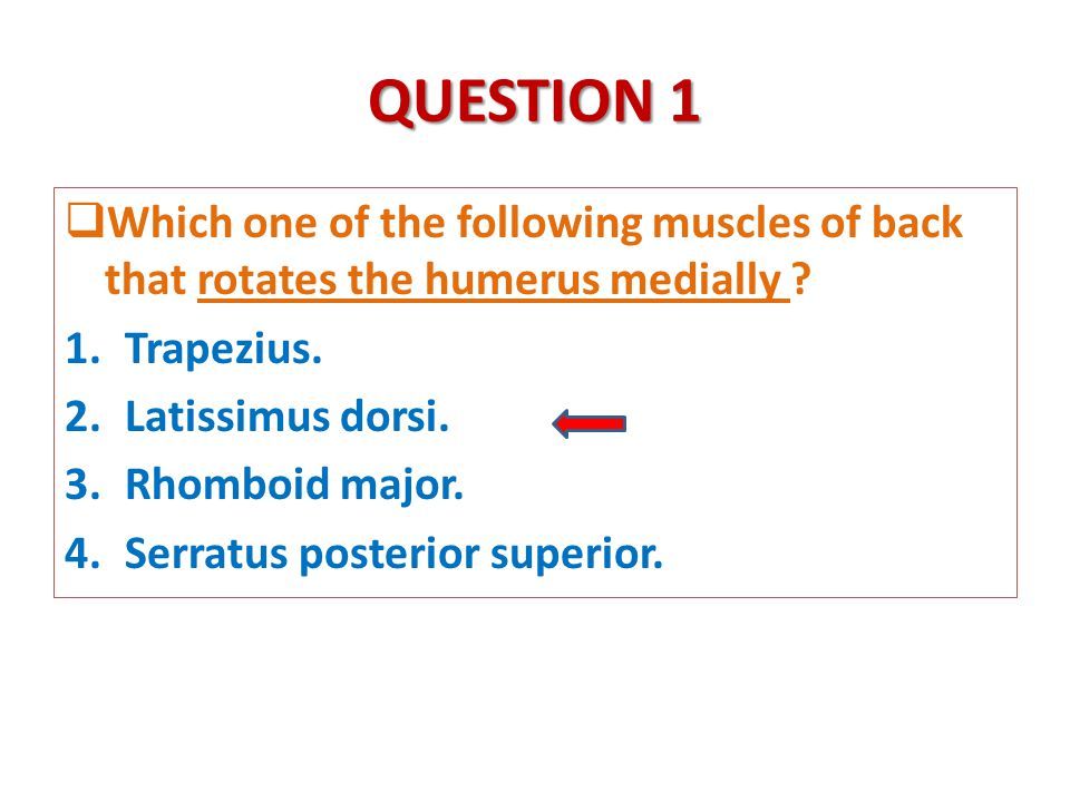 QUESTION 1  Which one of the following muscles of back that rotates the humerus medially .
