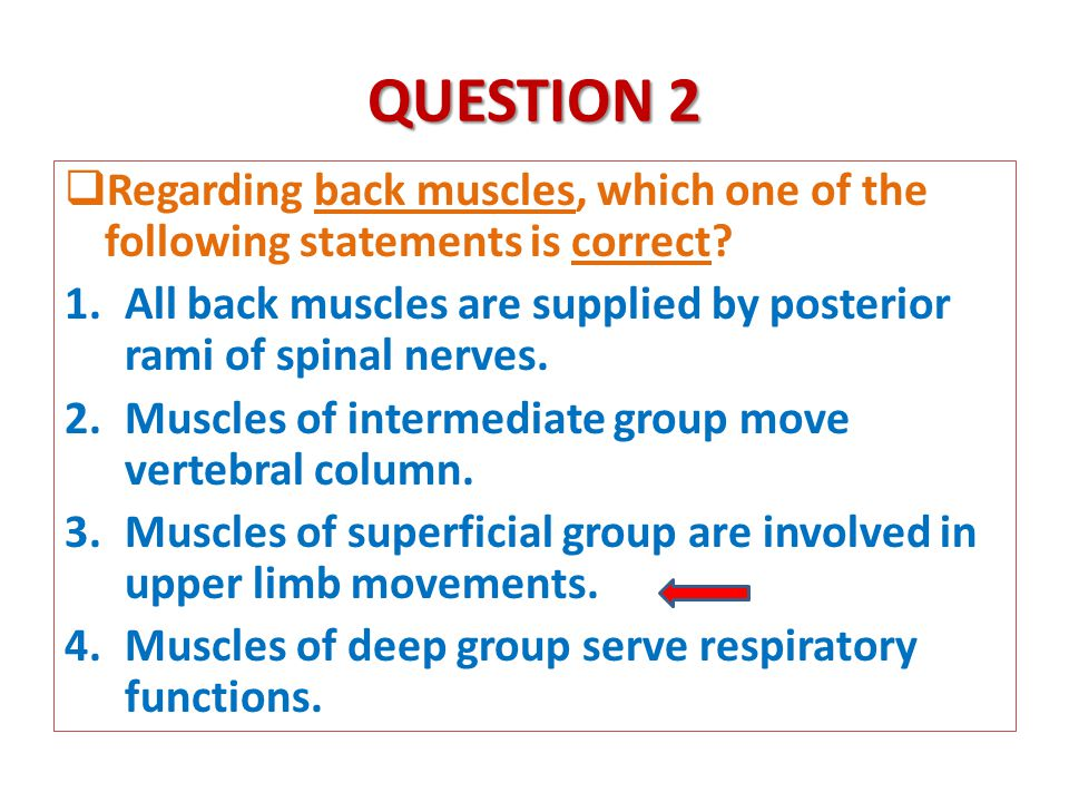 QUESTION 2  Regarding back muscles, which one of the following statements is correct.