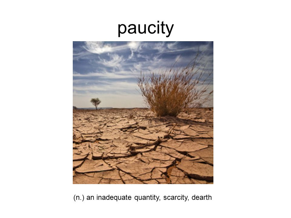 paucity (n.) an inadequate quantity, scarcity, dearth