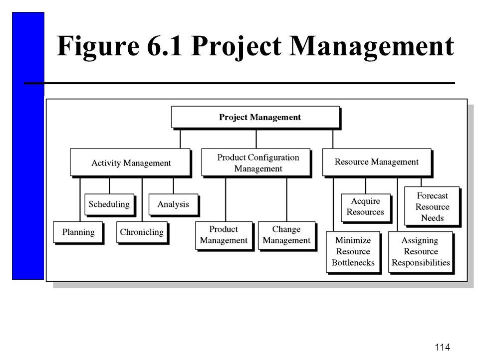 114 Figure 6.1 Project Management
