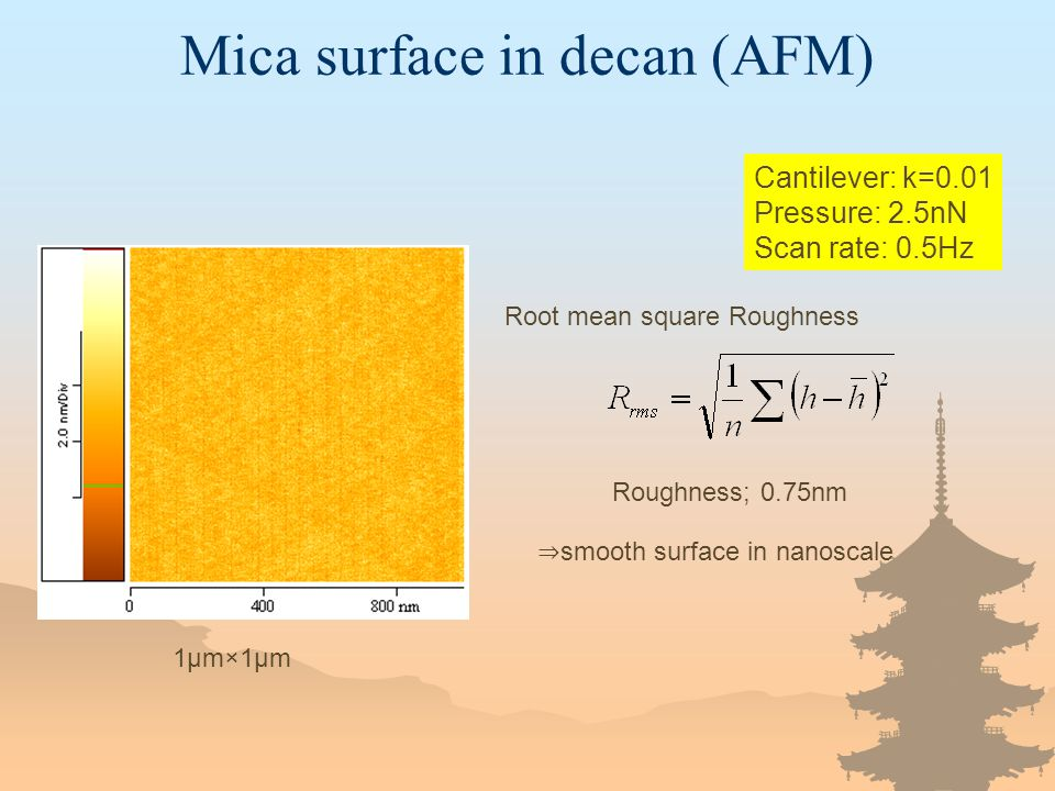 Cantilever: k=0.01 Pressure: 2.5nN Scan rate: 0.5Hz 1μm×1μm Root mean square Roughness Roughness; 0.75nm ⇒ smooth surface in nanoscale Mica surface in decan (AFM)