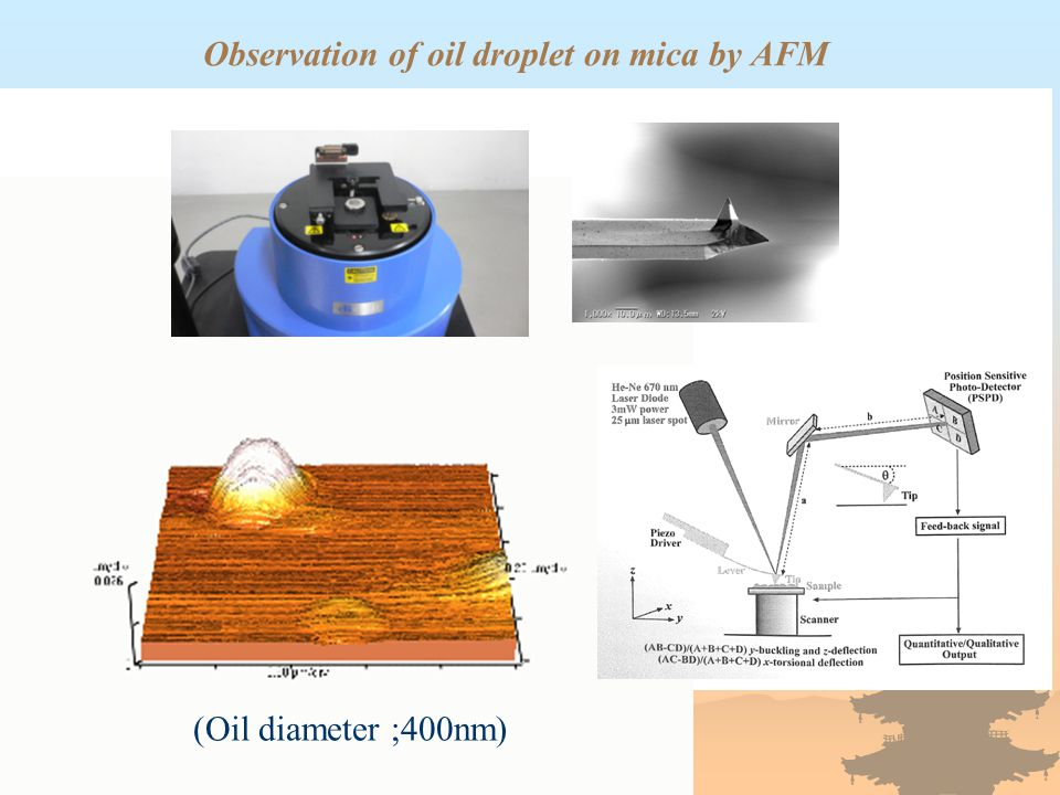 Observation of oil droplet by VSI (Vertical Scanning Interferometry) in distilled water at 25 ℃ and 1 atm 9