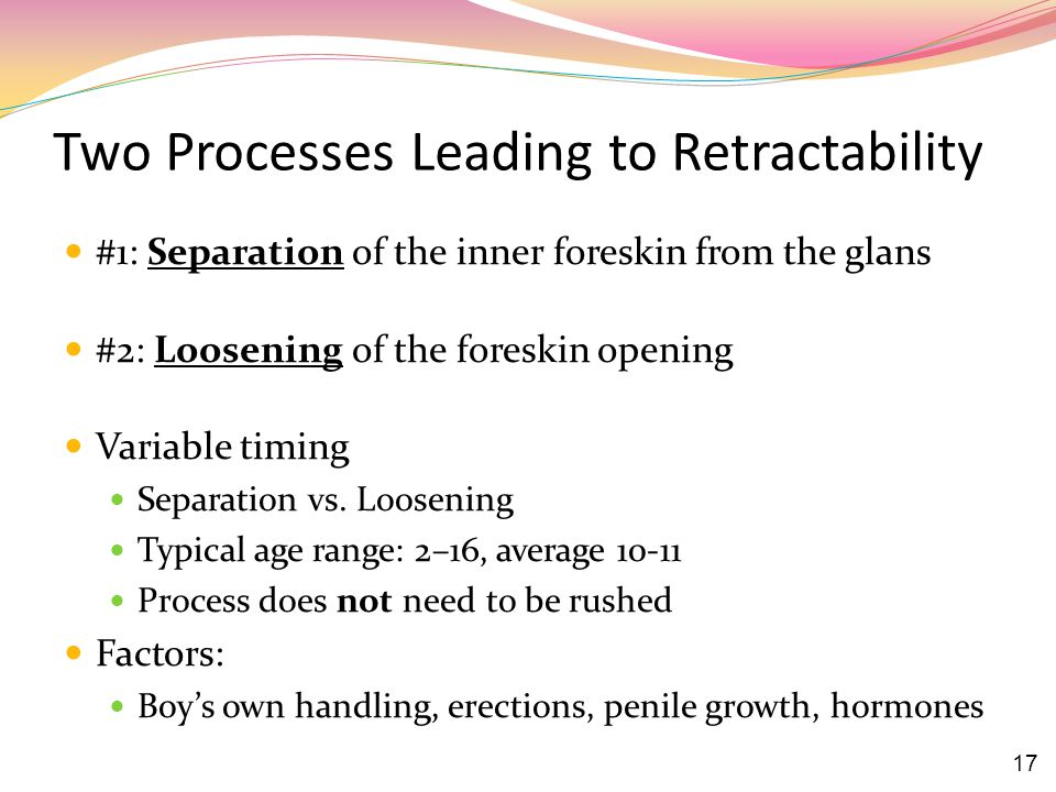 Two Processes Leading to Retractability #1: Separation of the inner foreskin from the glans #2: Loosening of the foreskin opening Variable timing Separation vs.