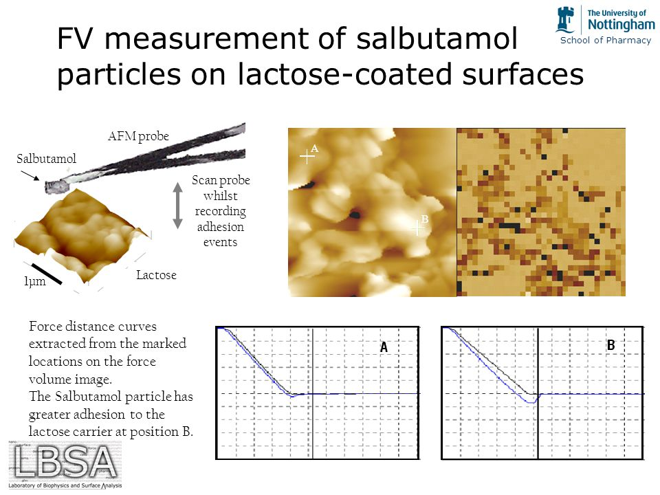 School of Pharmacy FV measurement of salbutamol particles on lactose-coated surfaces AFM probe Salbutamol Scan probe whilst recording adhesion events Lactose 1µm A B A B Force distance curves extracted from the marked locations on the force volume image.