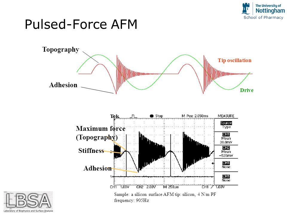School of Pharmacy Pulsed-Force AFM Topography Adhesion Drive Maximum force (Topography) Adhesion Stiffness Sample: a silicon surface AFM tip: silicon, 4 N/m PF frequency: 905Hz Tip oscillation