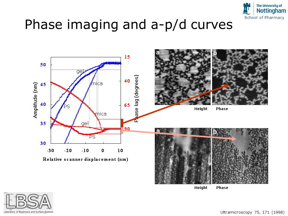 School of Pharmacy Phase imaging and a-p/d curves Ultramicroscopy 75, 171 (1998)