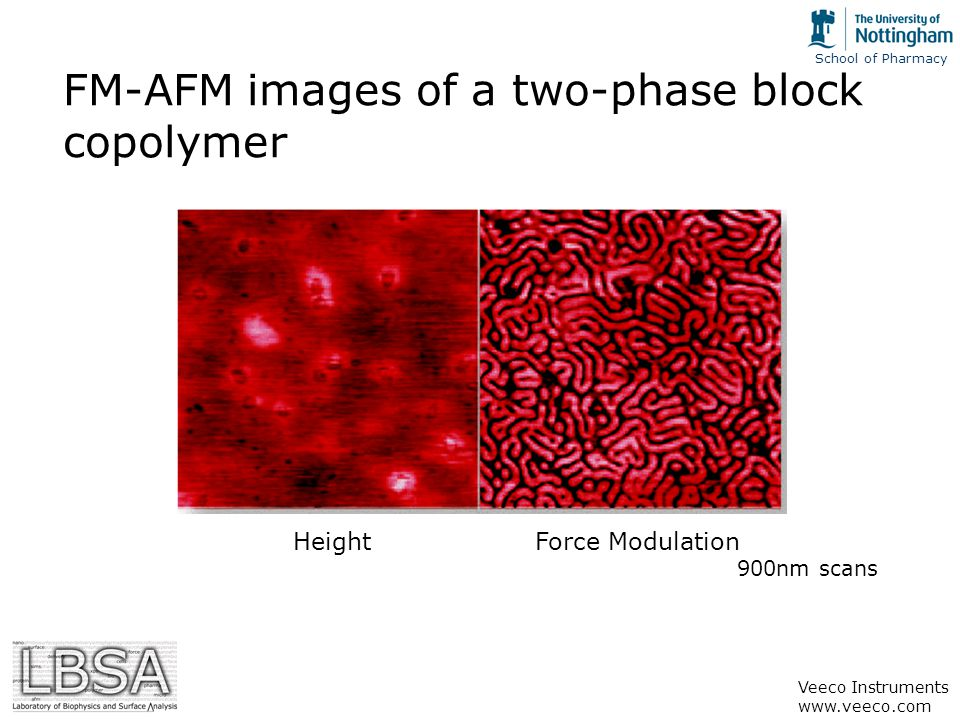 School of Pharmacy FM-AFM images of a two-phase block copolymer 900nm scans HeightForce Modulation Veeco Instruments www.veeco.com