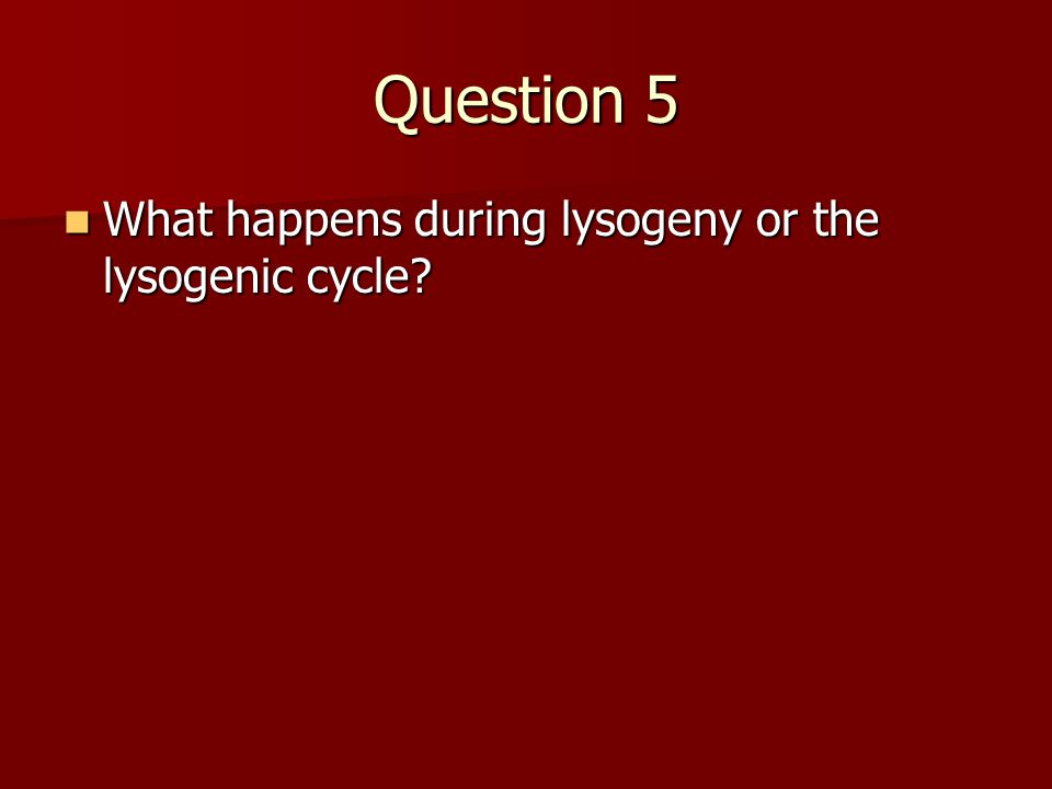 Question 5 What happens during lysogeny or the lysogenic cycle? What happens during lysogeny or the lysogenic cycle?