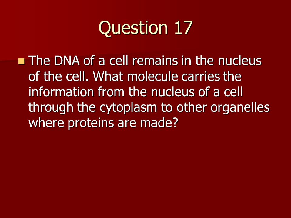 Question 17 The DNA of a cell remains in the nucleus of the cell.