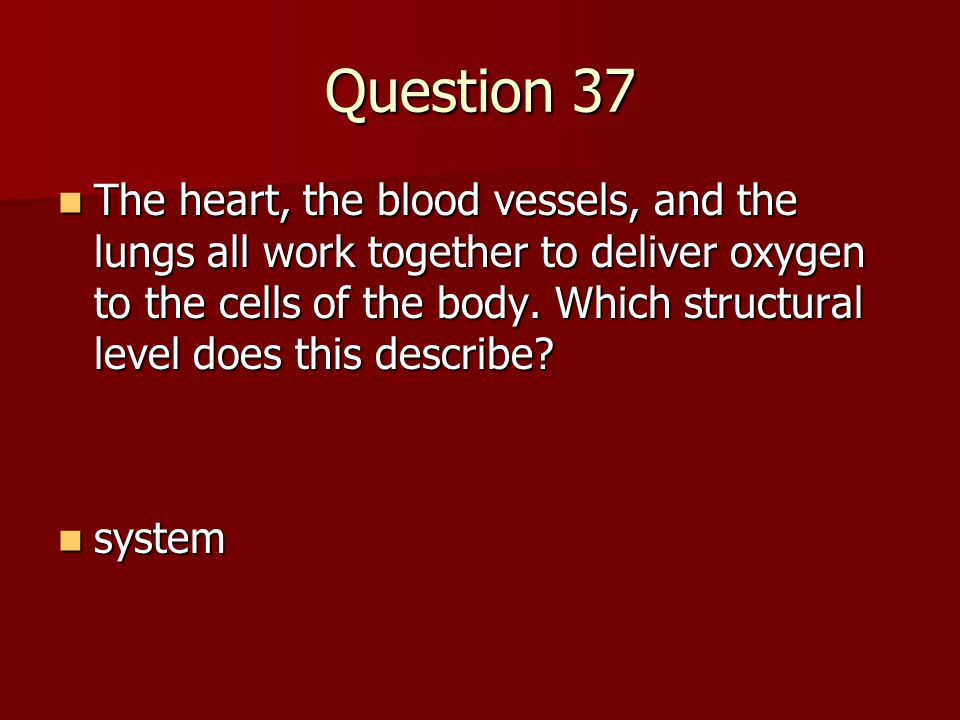 Question 37 The heart, the blood vessels, and the lungs all work together to deliver oxygen to the cells of the body. Which structural level does this
