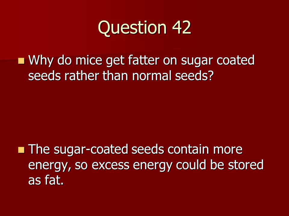Question 42 Why do mice get fatter on sugar coated seeds rather than normal seeds? Why do mice get fatter on sugar coated seeds rather than normal see