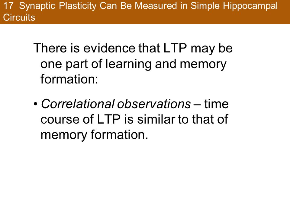 17 Synaptic Plasticity Can Be Measured in Simple Hippocampal Circuits There is evidence that LTP may be one part of learning and memory formation: Correlational observations – time course of LTP is similar to that of memory formation.
