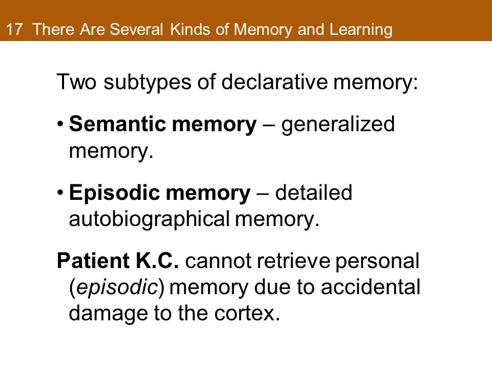 17 There Are Several Kinds of Memory and Learning Two subtypes of declarative memory: Semantic memory – generalized memory. Episodic memory – detailed