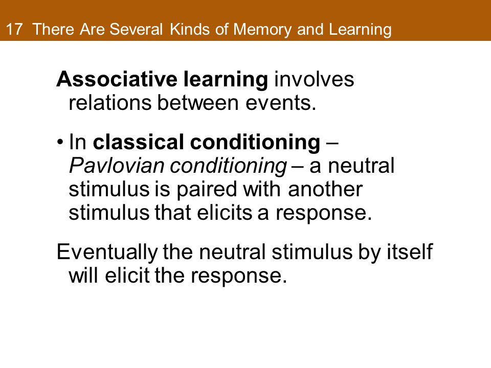 17 There Are Several Kinds of Memory and Learning Associative learning involves relations between events.