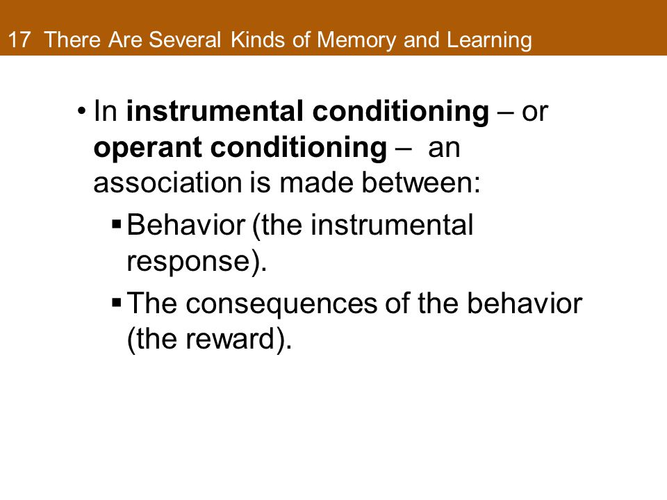 17 There Are Several Kinds of Memory and Learning In instrumental conditioning – or operant conditioning – an association is made between:  Behavior