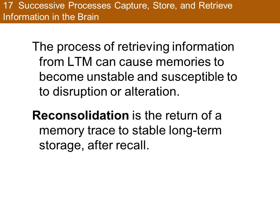 17 Successive Processes Capture, Store, and Retrieve Information in the Brain The process of retrieving information from LTM can cause memories to become unstable and susceptible to to disruption or alteration.
