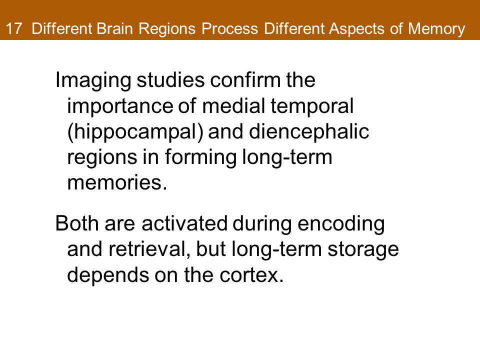17 Different Brain Regions Process Different Aspects of Memory Imaging studies confirm the importance of medial temporal (hippocampal) and diencephalic regions in forming long-term memories.