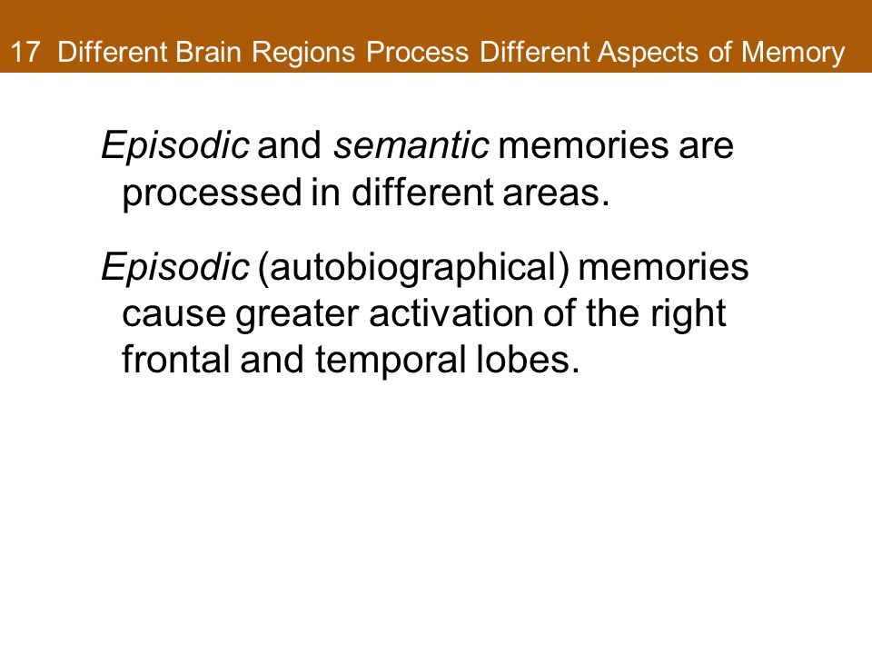 17 Different Brain Regions Process Different Aspects of Memory Episodic and semantic memories are processed in different areas.