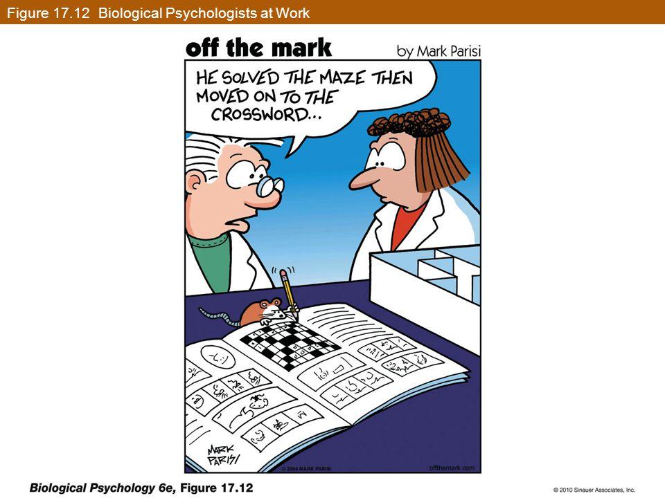 Figure 17.12 Biological Psychologists at Work