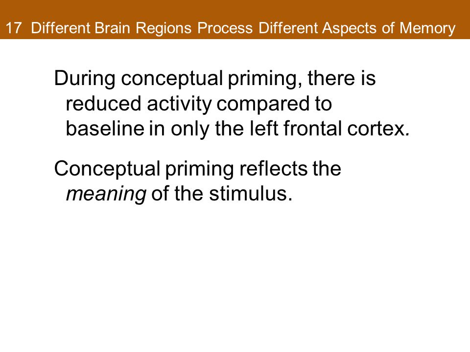 17 Different Brain Regions Process Different Aspects of Memory During conceptual priming, there is reduced activity compared to baseline in only the left frontal cortex.