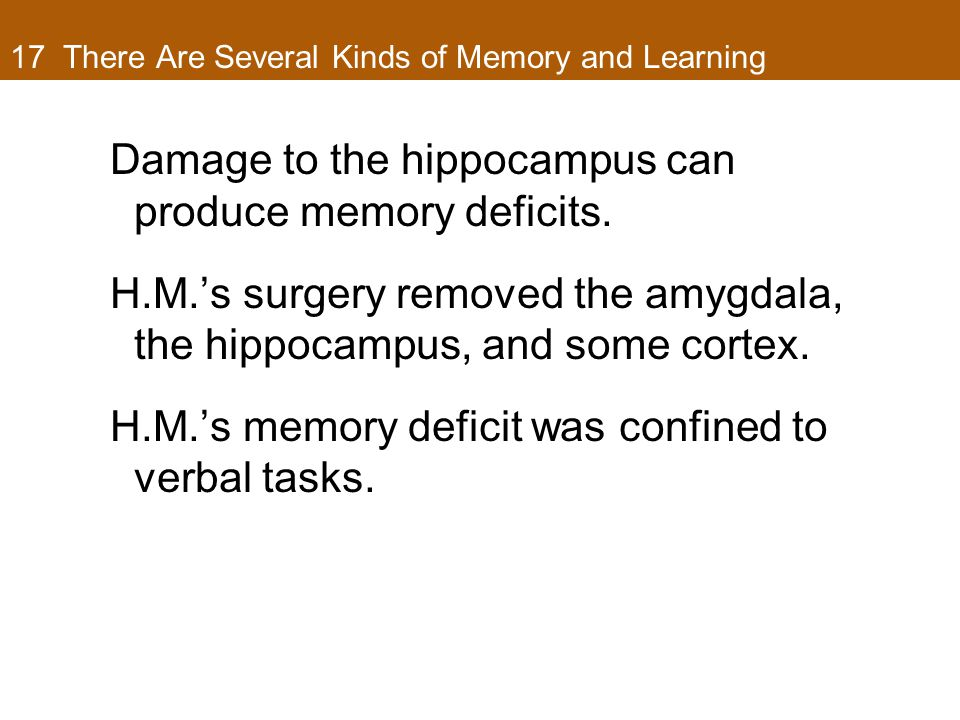 17 There Are Several Kinds of Memory and Learning Damage to the hippocampus can produce memory deficits.