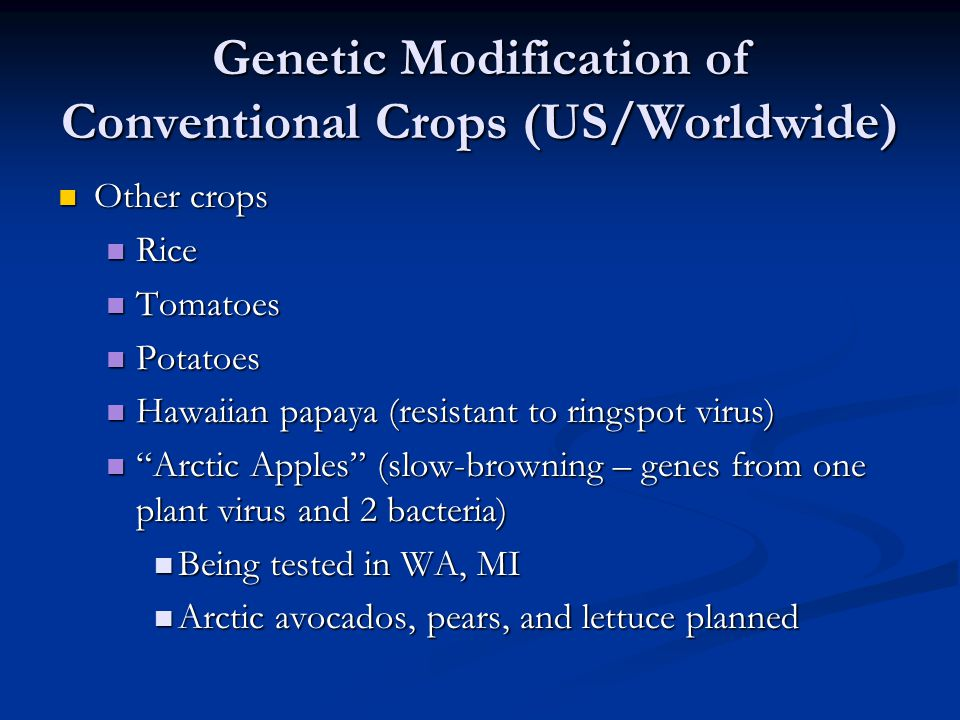 Genetic Modification of Conventional Crops (US/Worldwide) Other crops Other crops Rice Rice Tomatoes Tomatoes Potatoes Potatoes Hawaiian papaya (resis