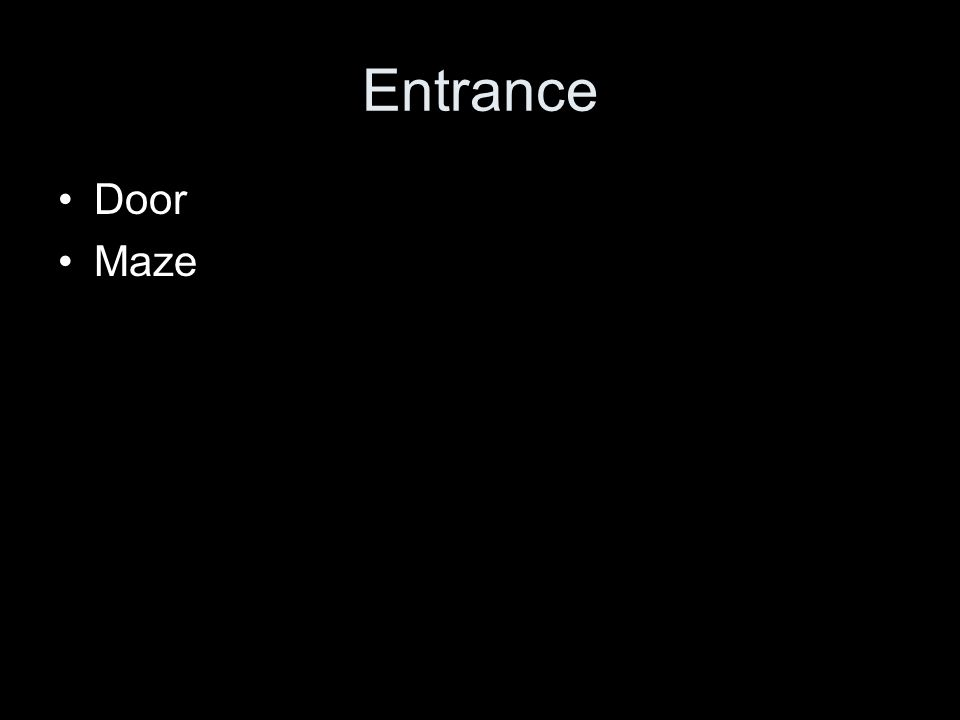 Entrance Door Maze