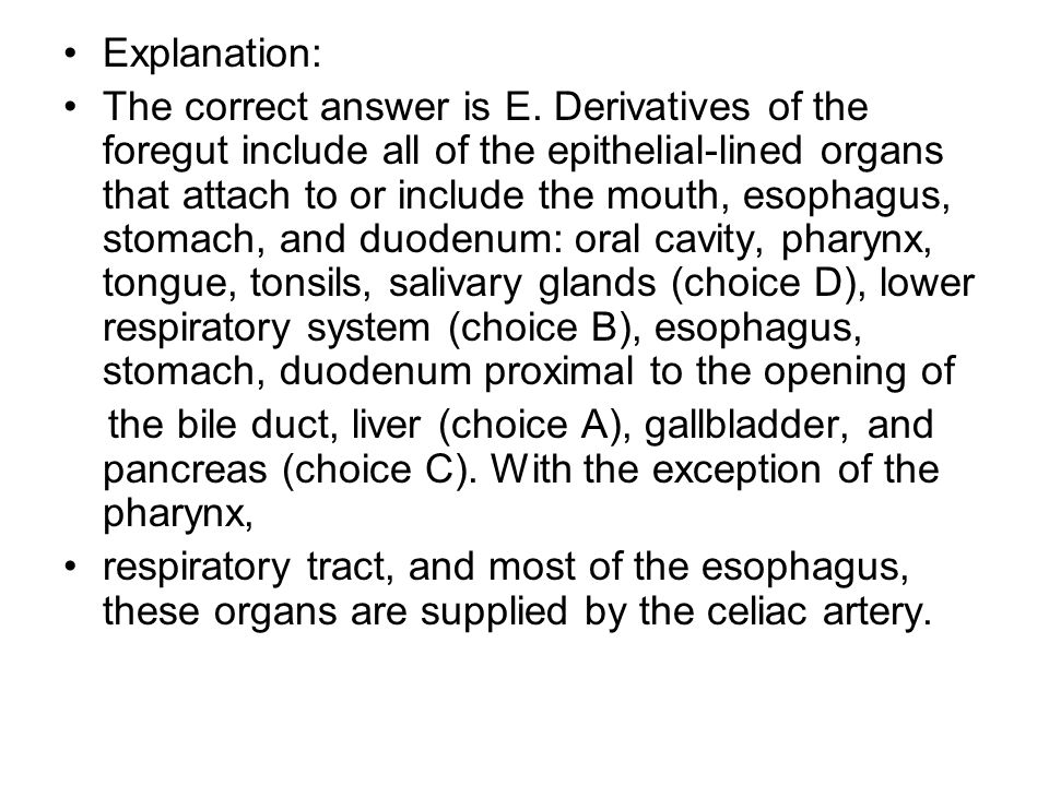Explanation: The correct answer is E. Derivatives of the foregut include all of the epithelial-lined organs that attach to or include the mouth, esoph