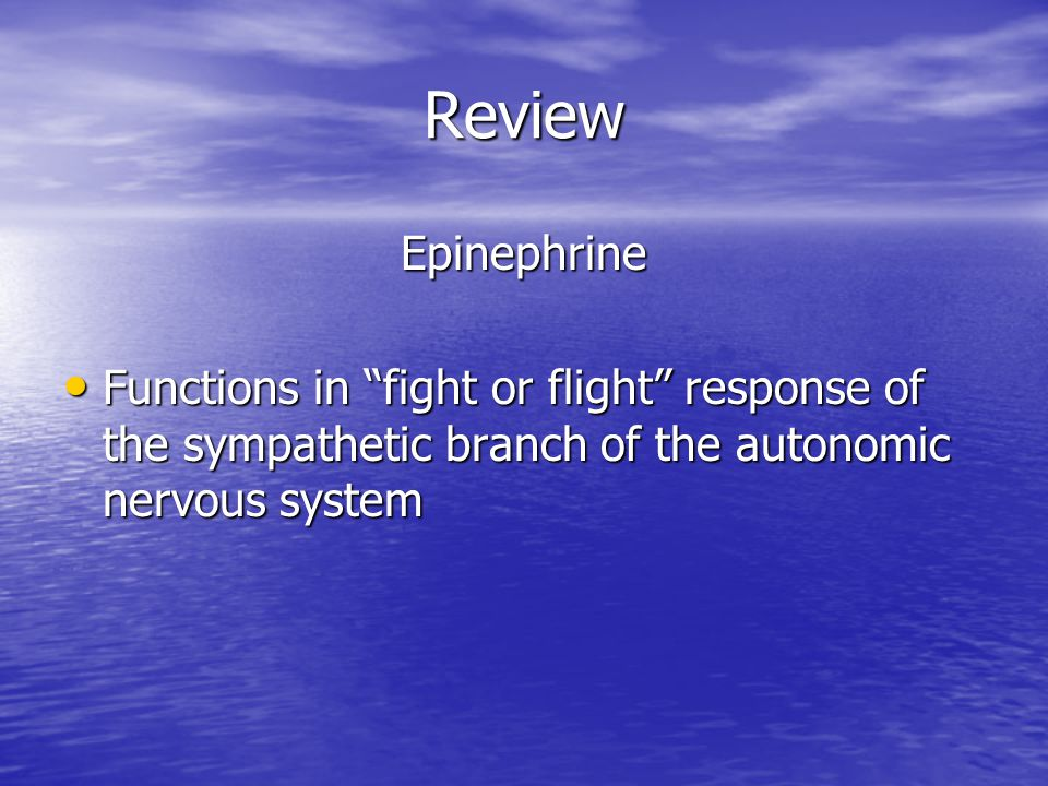 Review Epinephrine Functions in fight or flight response of the sympathetic branch of the autonomic nervous system Functions in fight or flight response of the sympathetic branch of the autonomic nervous system