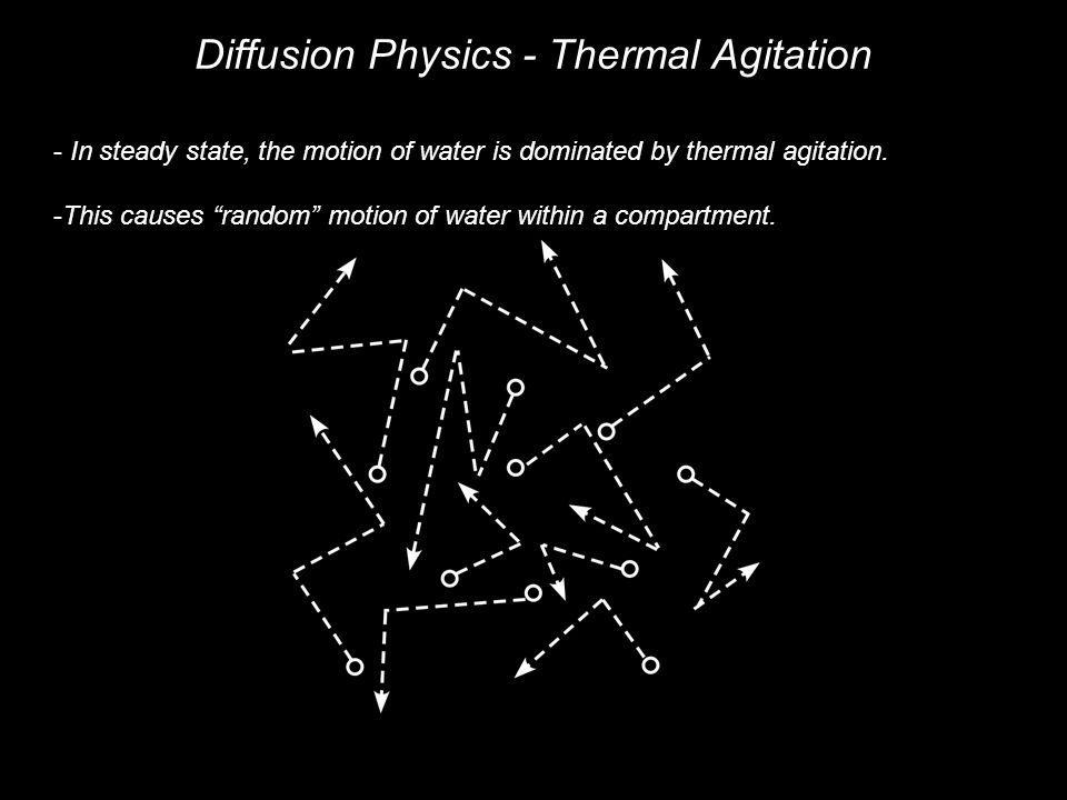 Diffusion Physics - Thermal Agitation - In steady state, the motion of water is dominated by thermal agitation.