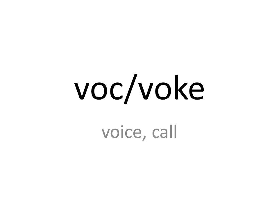 voc/voke voice, call