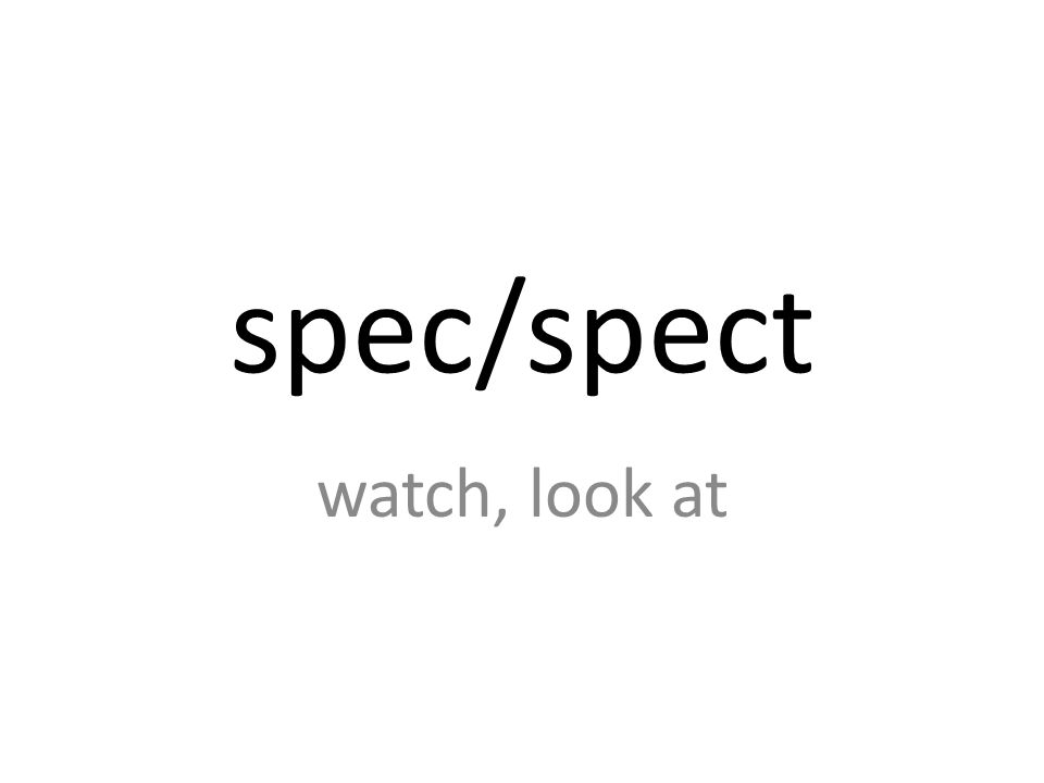 spec/spect watch, look at
