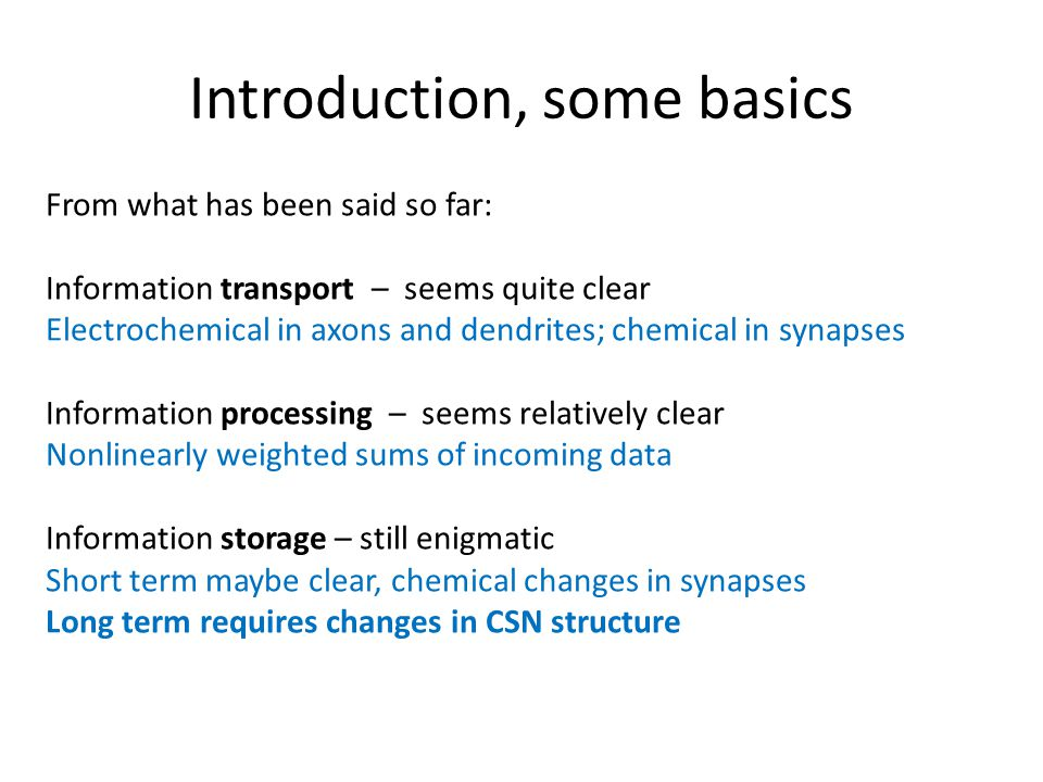 Introduction, some basics From what has been said so far: Information transport – seems quite clear Electrochemical in axons and dendrites; chemical in synapses Information processing – seems relatively clear Nonlinearly weighted sums of incoming data Information storage – still enigmatic Short term maybe clear, chemical changes in synapses Long term requires changes in CSN structure