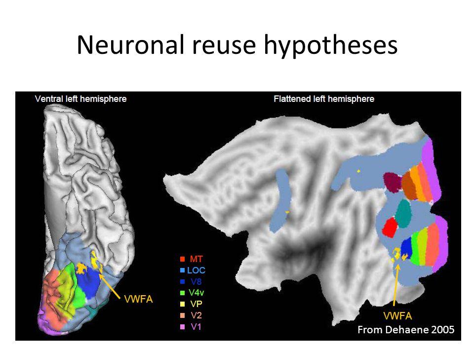Neuronal reuse hypotheses From Dehaene 2005